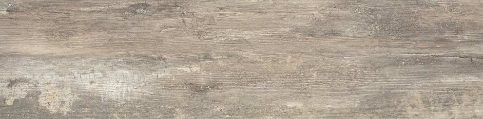 Outdoor Collection 008 Wetwood (Trophy) Beige Rectified